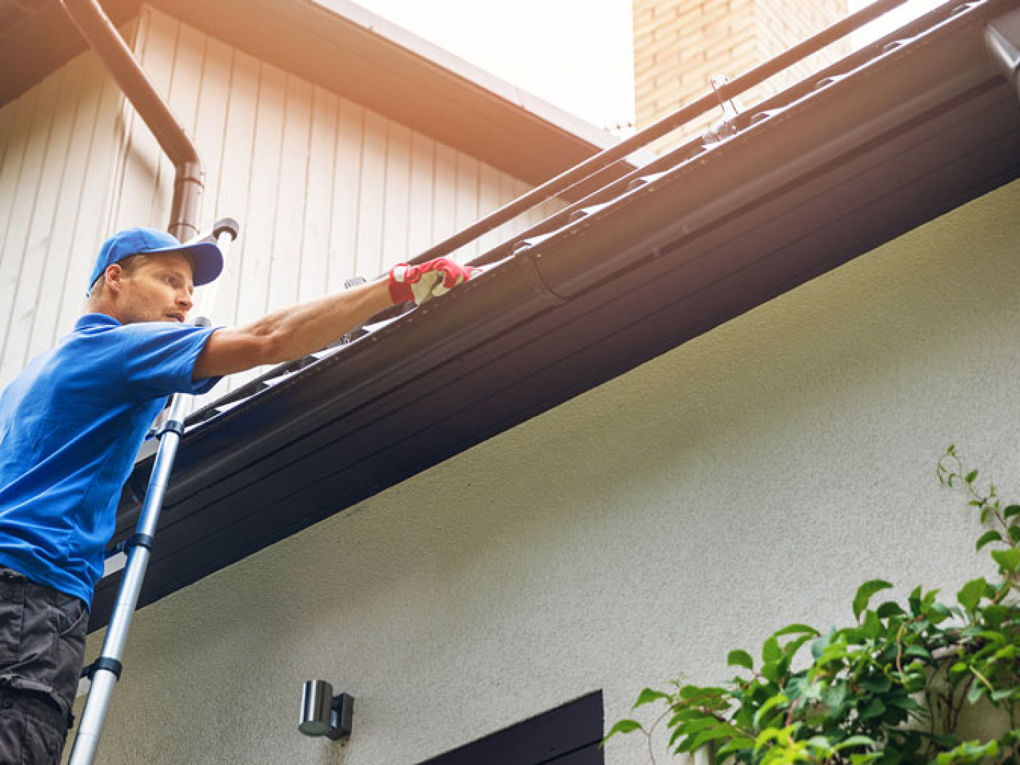 Is Your Roof in Peak Condition?